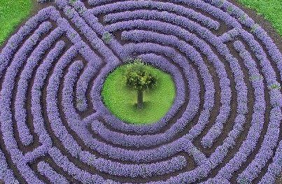 lav-labyrinth